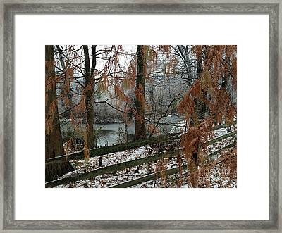 Through The Leaves Of A Winter Landscape  Framed Print