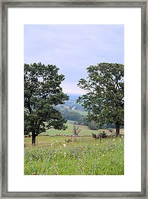 Through The Oaks Framed Print