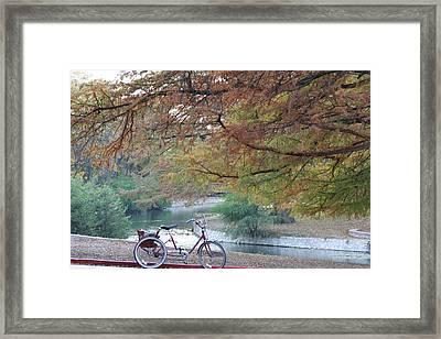Through The Park Framed Print by Diana Gonzalez
