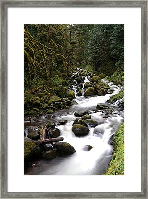 Through The Rocks And Forest Framed Print by Jeff Swan
