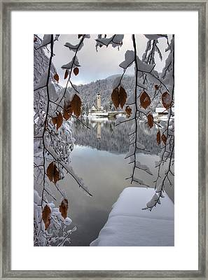 Framed Print featuring the photograph Through The Snow Trees by Ian Middleton