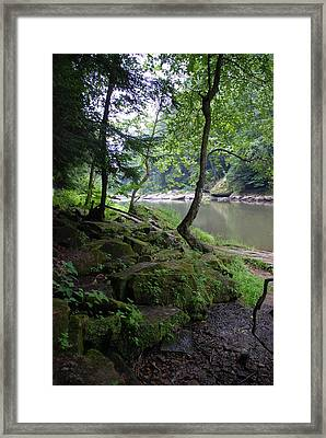 Through The Trees Framed Print by Clay Peters Photography