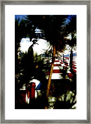 Through The Trees Framed Print by Jez C Self