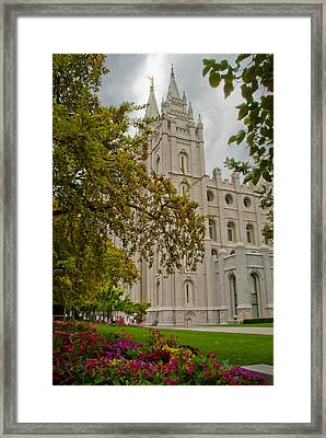 Through The Trees Framed Print by La Rae  Roberts
