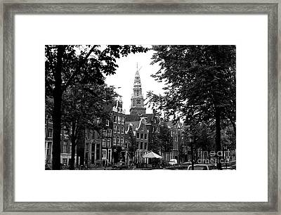 Through The Trees Mono Framed Print
