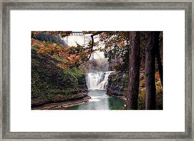 Through The Trees Framed Print by Peter Chilelli