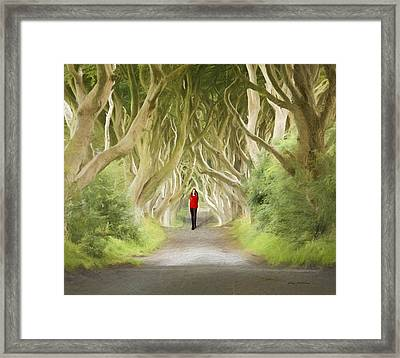 Framed Print featuring the photograph Through The Trees by Roy  McPeak