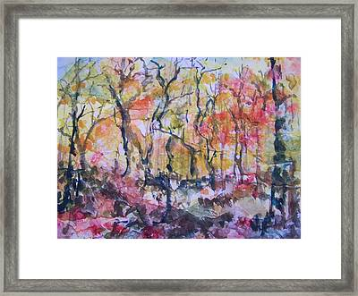 Through The Trees Framed Print by Sandy Collier
