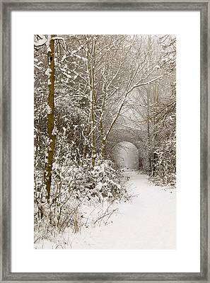 Through The Trees Through The Snow Framed Print by Adam Smith