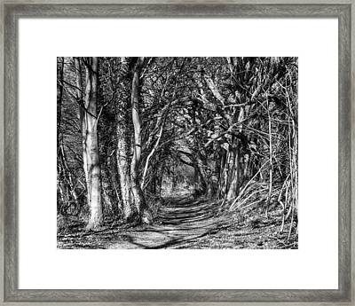 Through The Tunnel Bw 16x20 Framed Print