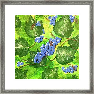 Through The Vines Framed Print