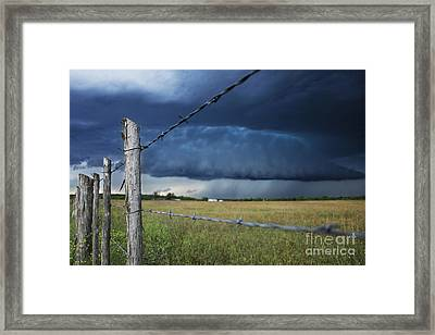 Through The Wires Framed Print