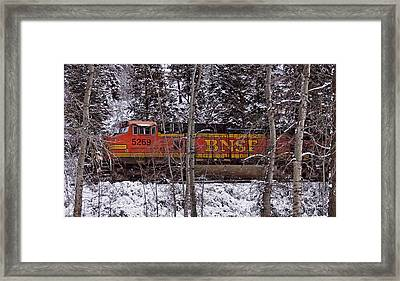 Through The Woods Framed Print by Albert Seger
