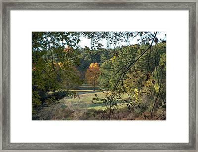 Through The Woods At The Sudbury River Shores, Concord, Massachusetts Framed Print by Jean-Louis Eck