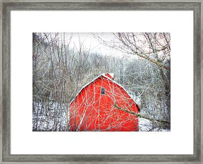 Framed Print featuring the photograph Through The Woods by Julie Hamilton