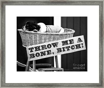 Throw Me A Bone Bitch Framed Print by John Rizzuto