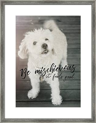 Thumper Dog Quote Framed Print by JAMART Photography