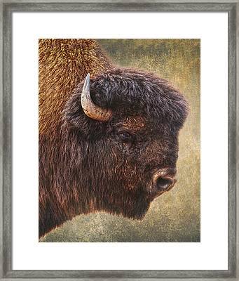 Thunder Beast Framed Print by Ron McGinnis
