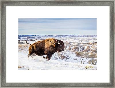 Thunder In The Snow Framed Print by Rikk Flohr