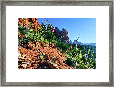Thunder Mountain 07-006 Framed Print