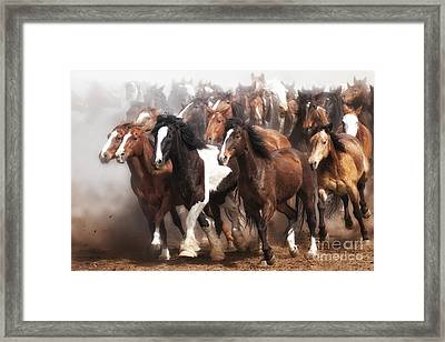 Thundering Hooves Framed Print by Heather Swan