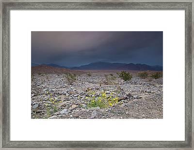 Thunderstorm Over Death Valley National Park Framed Print