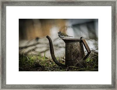 Thursday Morning Framed Print by Everet Regal
