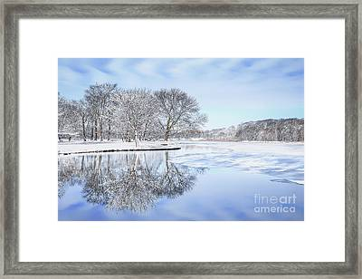 The March Of Winter Framed Print by Evelina Kremsdorf