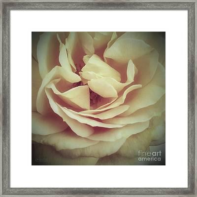 Ti Voglio Bene Mamma Framed Print by Robert ONeil