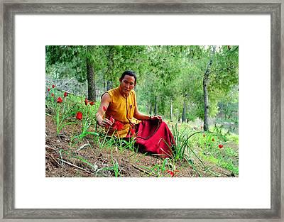 Tibetan Doctor In Lahav Forest Framed Print