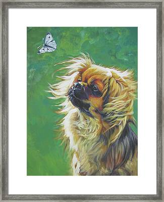 Tibetan Spaniel And Cabbage White Butterfly Framed Print by Lee Ann Shepard