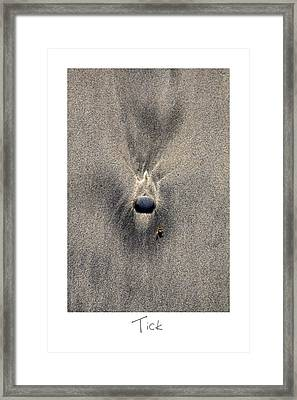 Tick Framed Print by Peter Tellone