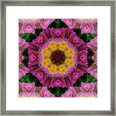 Tickled Pink Framed Print by Ann Bridges
