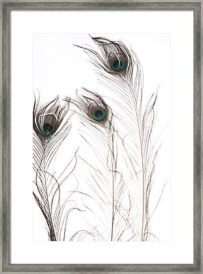 Tickles Series Image 1 Framed Print