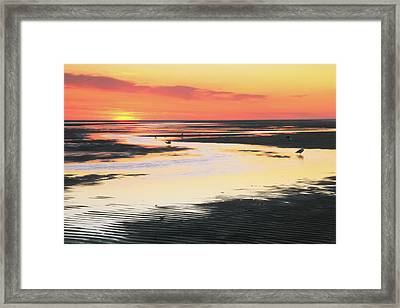 Tidal Flats At Sunset Framed Print