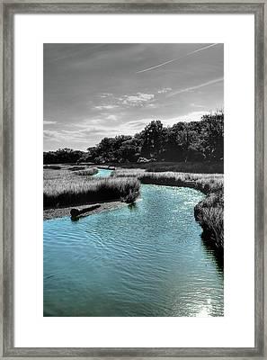 Tidal Marsh Framed Print by Drew Castelhano