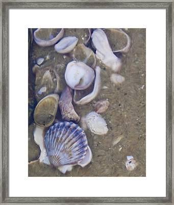 Tidal Pool - Brant Point - Nantucket Framed Print by Henry Krauzyk