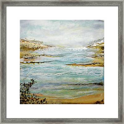 Tidal Pool 1 Framed Print