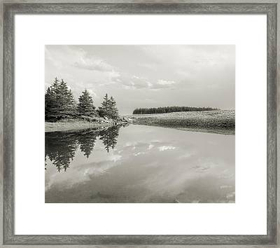 Tidal Pool, Schoodic Point, Bar Harbor, Me Framed Print