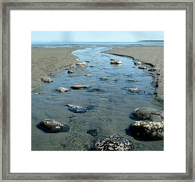 Framed Print featuring the photograph Tidal Pools by 'REA' Gallery