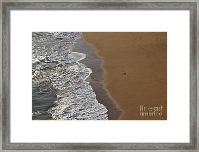 Tidal Waves And Seagull In Lagoa Framed Print by Angelo DeVal