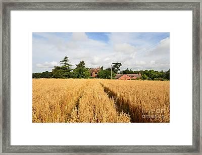 Tiddington, Oxfordshire Framed Print by Nichola Denny