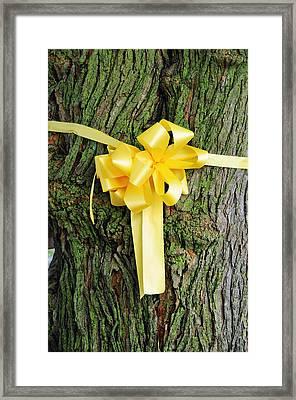 Tie A Yellow Ribbon Framed Print by Lyle  Huisken