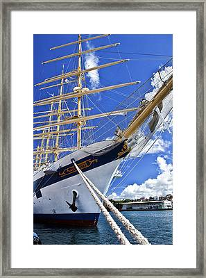 Tied Down Framed Print by Jon Glaser