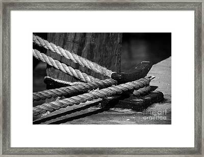 Tied Down Framed Print
