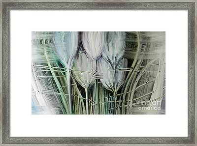 Tied Hands Framed Print by Fatima Stamato