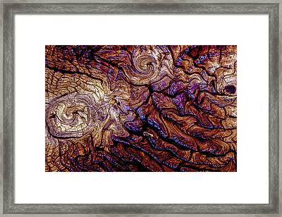Tied Up In Knots Framed Print