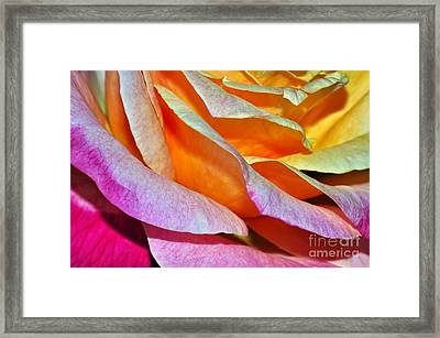 Tiered Petals Framed Print by Kaye Menner