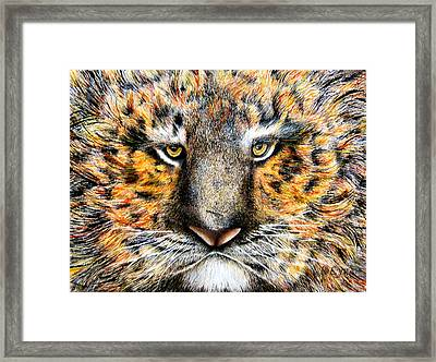 Tig The Tiger With An Attitude Framed Print by JoLyn Holladay