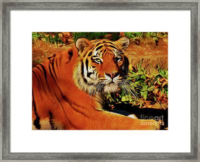 Tiger 22218 Framed Print